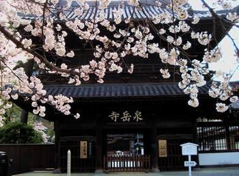 Sengaku_temple