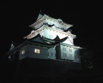 Odawara_catsle