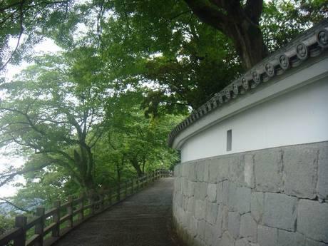 Fukuchiyama_castle3