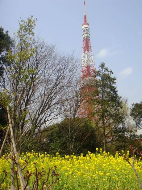 Tokyo_tower_201003
