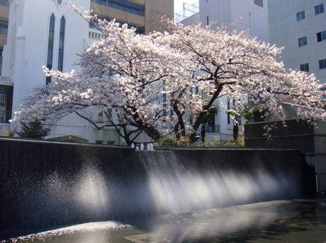 Yokohama_1a