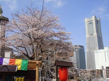Yokohama_narita