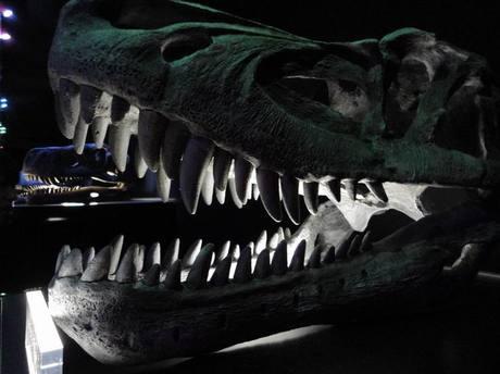 Roppongi_dinosaurs2