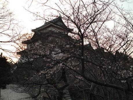 Wakayama5