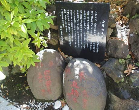 Sanukiinari_5