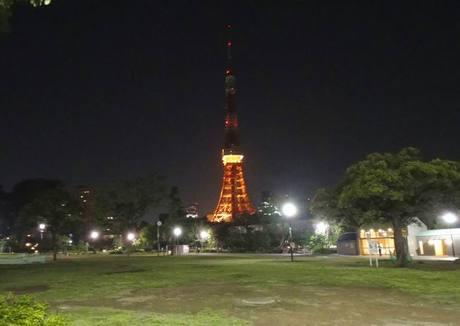 Tokyotowerrose_3