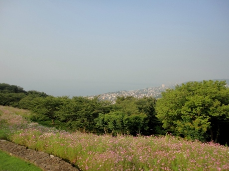 Azumayama201108_4