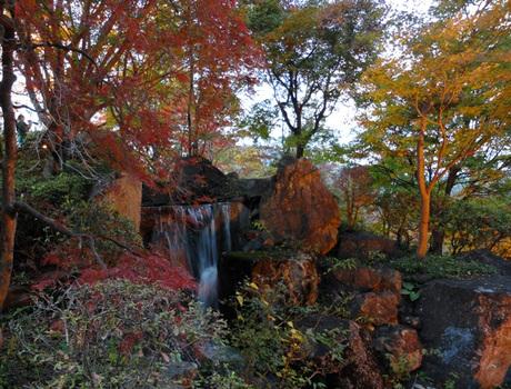 Hanayamapark11