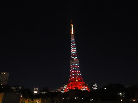 Tokyotower201112m2