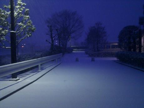 Snow_morning_20130128