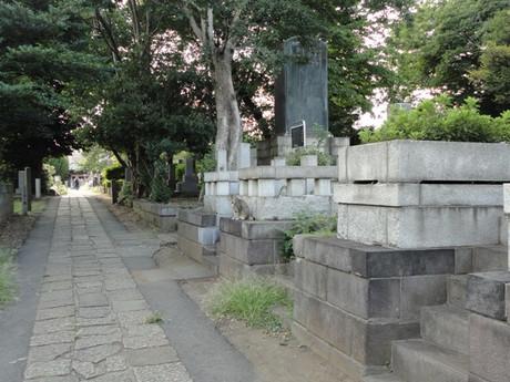 Yanakaneko_2
