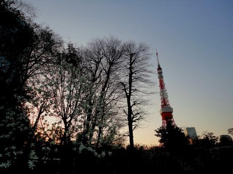 Tokyotower_20140328