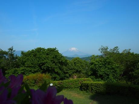 Ninomiya1