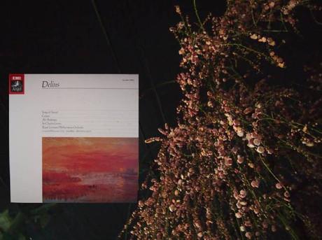 Delius_naka