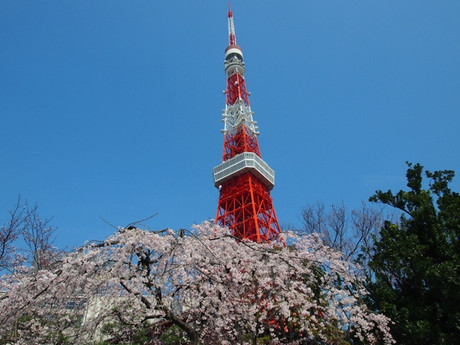 Tokyotower_h