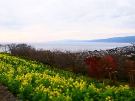 Azumayama_2