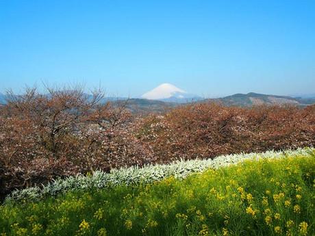Azumayama_1