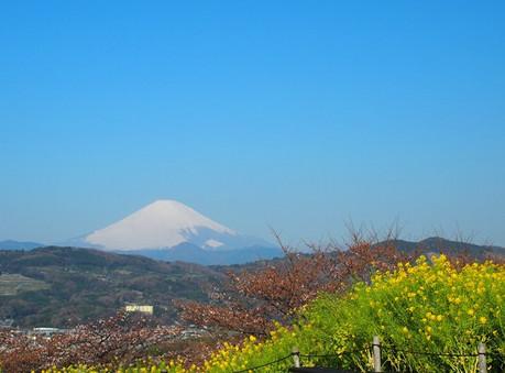 Azumayama_9