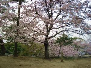 Matsusaka_castle_1
