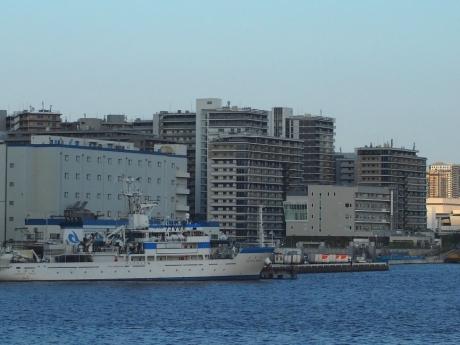 Takeshiba-03