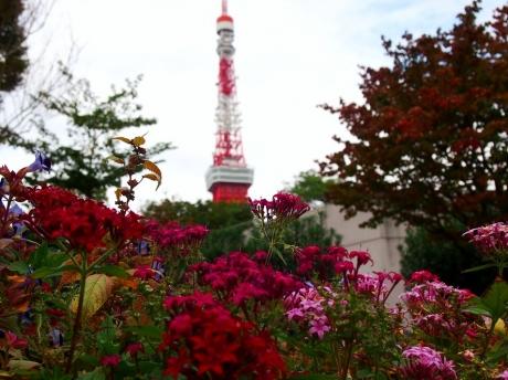 Tokyo-tw-01_20201111212601