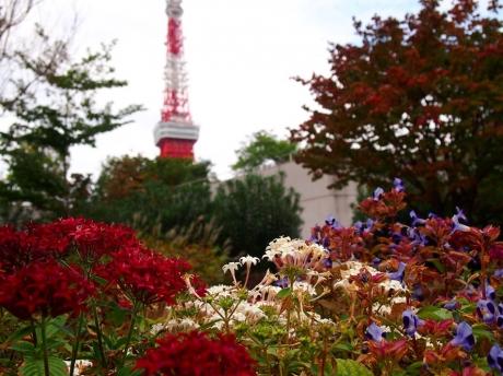 Tokyo-tw-02