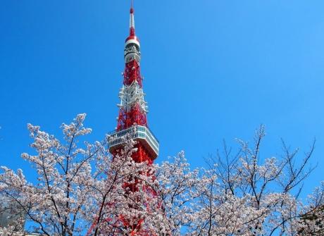 Tokyo-tw-1